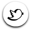Twitter bird icon 100px 90dpi.png