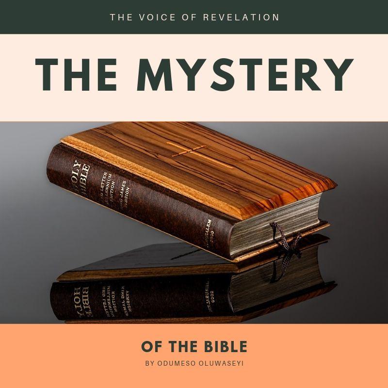 THE VOICE OF REVELATION (1).jpg